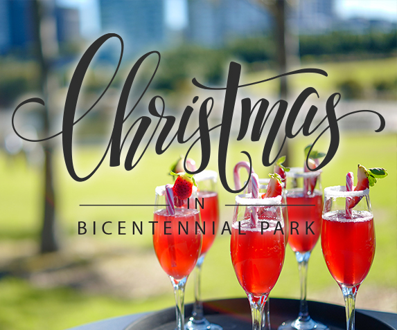 Christmas Parties at Waterview
